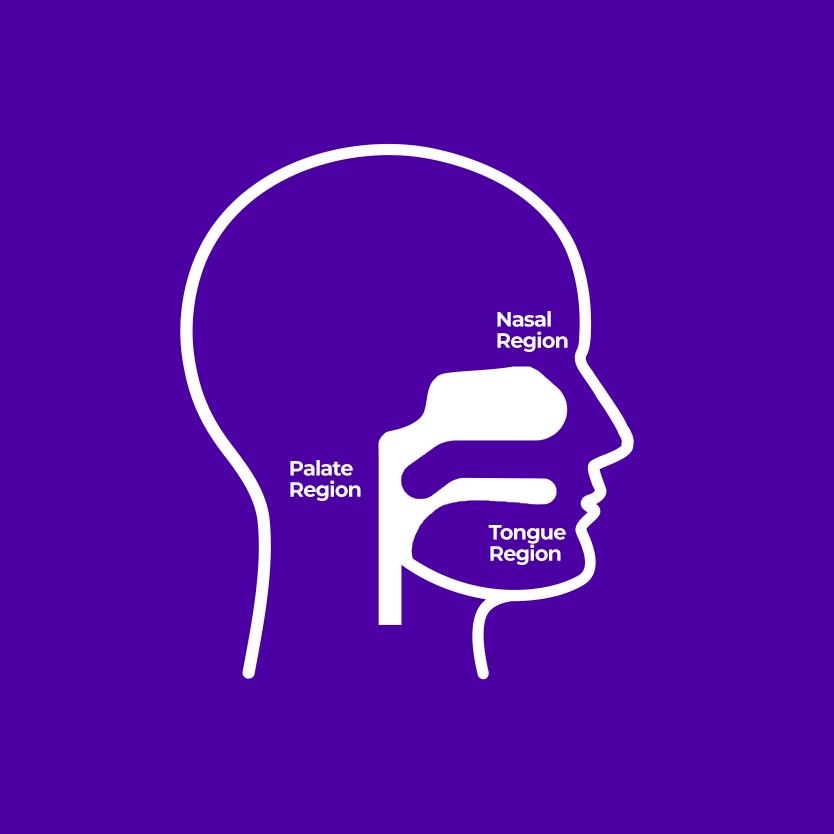 Head - Sleep Apnea and Snoring Surgery for a Better Night's Sleep